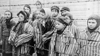 Photo of Canadians are dangerously misinformed about the Holocaust: poll