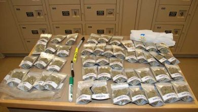 Photo of Wetaskiwin RCMP Execute Search Warrant; Seized illegal Drugs & Weapons – Canada Police Report