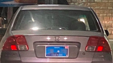 Photo of Ontario's new licence plates will be scrapped