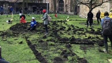 Photo of Extinction Rebellion digs up Cambridge Trinity College lawn