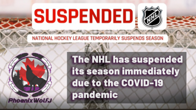 Photo of NHL temporarily suspends season