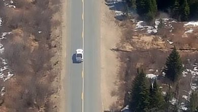 Photo of New Brunswick Truck owner uses family HELICOPTER to pursue his stolen vehicle along a highway