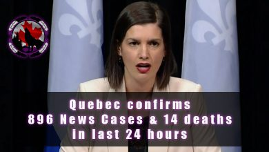 Photo of Quebec announces 896 New cases, 14 new deaths