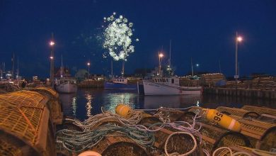 Photo of The 145th launch of the lobster traps will be virtual in the Magdalen Islands