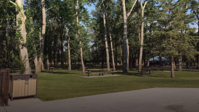 Photo of Men fined $1,200 for eating burritos in Calgary park – True North