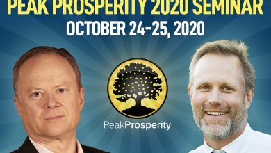 Announcing The 2020 Peak Prosperity Digital Seminar: Oct 24-25
