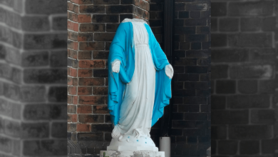 "Photo of Toronto churchgoers ""horrified"" after statue of Mary decapitated ahead of Sunday mass"