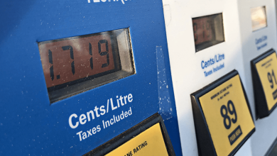 Photo of Carbon taxes fail to benefit the environment or taxpayers: report