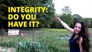Photo of Integrity: Do You Have It?