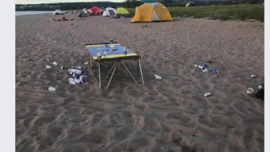 Photo of Consultation on beach management in Gaspé