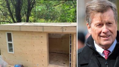 Photo of City of Toronto tells carpenter to stop building shelters for homeless people