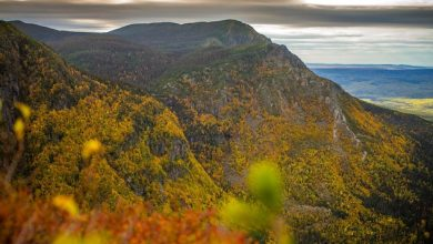 Photo of Long fall warmth in Eastern Quebec: unheard of, according to Environment Canada